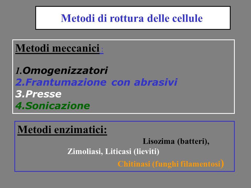 Metodi meccanici : 1. Omogenizzatori 2.Frantumazione con abrasivi 3.Presse 4.Sonicazione Metodi enzimatici: Lisozima (batteri), Zimoliasi, Liticasi (l