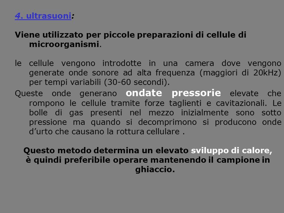 4. ultrasuoni: Viene utilizzato per piccole preparazioni di cellule di microorganismi. le cellule vengono introdotte in una camera dove vengono genera