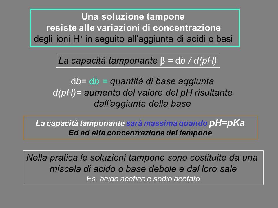Una soluzione tampone resiste alle variazioni di concentrazione degli ioni H + in seguito all'aggiunta di acidi o basi La capacità tamponante  = db /