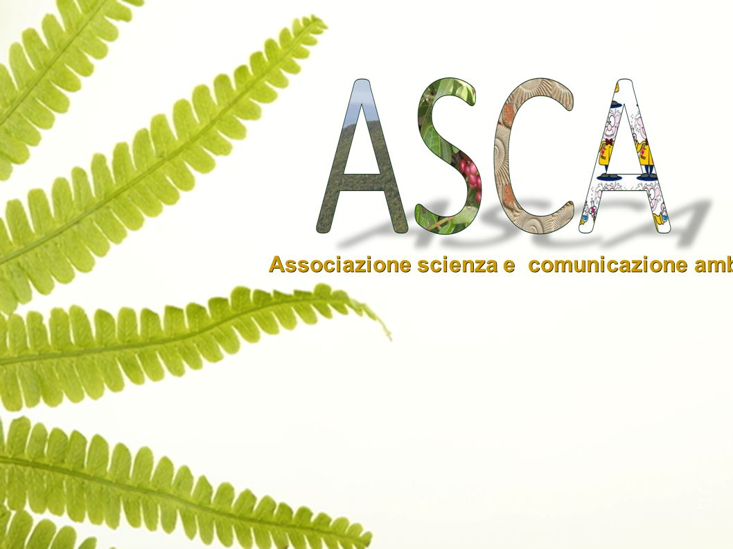 Associazione scienza e comunicazione ambientale Associazione scienza e comunicazione ambientale