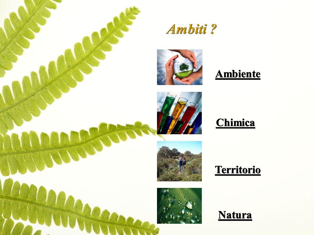 Ambiti Ambiente Chimica Territorio Natura