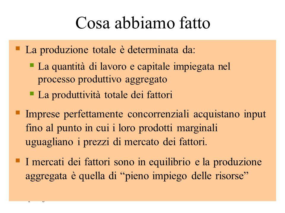 Chapter Eighteen63  La produzione totale è determinata da:  La quantità di lavoro e capitale impiegata nel processo produttivo aggregato  La produt