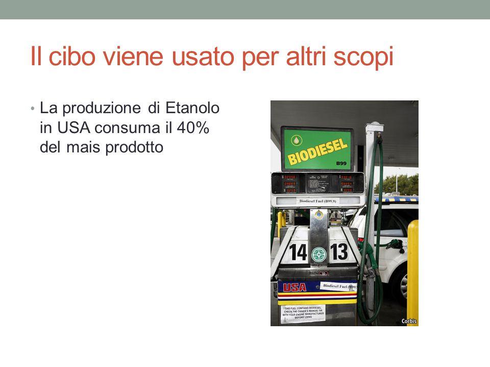 Il cibo viene usato per altri scopi La produzione di Etanolo in USA consuma il 40% del mais prodotto