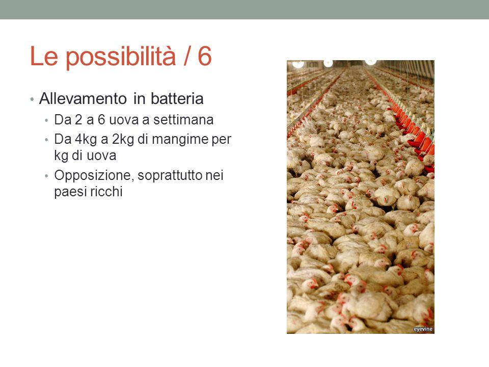 Le possibilità / 6 Allevamento in batteria Da 2 a 6 uova a settimana Da 4kg a 2kg di mangime per kg di uova Opposizione, soprattutto nei paesi ricchi