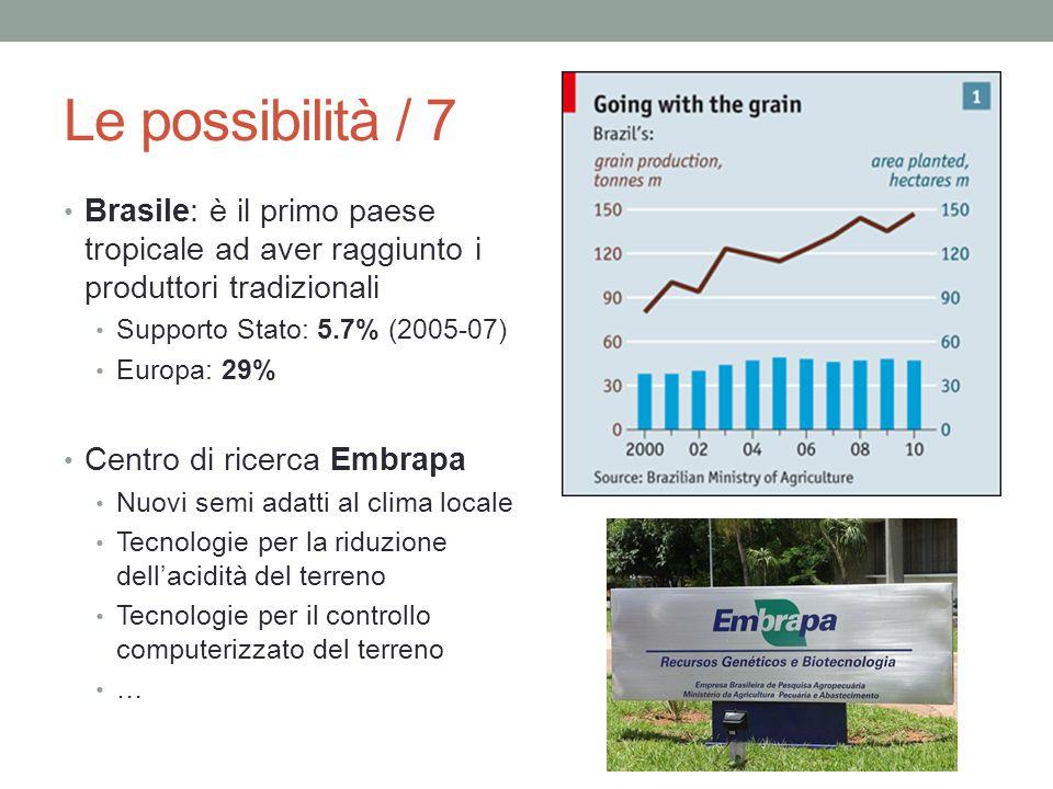 Le possibilità / 7 Brasile: è il primo paese tropicale ad aver raggiunto i produttori tradizionali Supporto Stato: 5.7% (2005-07) Europa: 29% Centro d