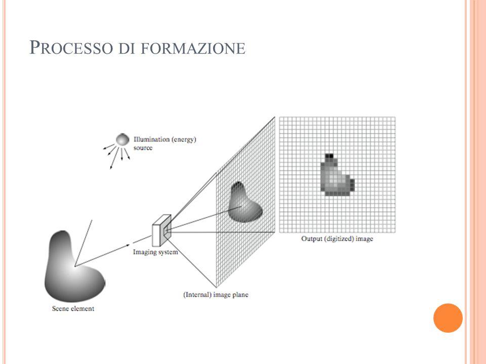 P ROCESSO DI FORMAZIONE