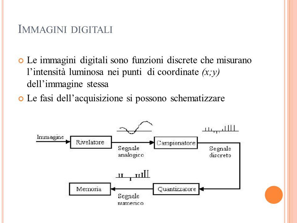 I MMAGINI DIGITALI Le immagini digitali sono funzioni discrete che misurano l'intensità luminosa nei punti di coordinate (x;y) dell'immagine stessa Le