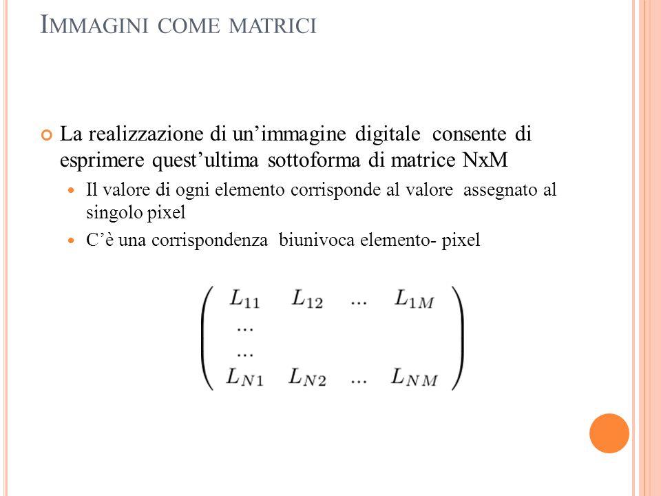 I MMAGINI COME MATRICI La realizzazione di un'immagine digitale consente di esprimere quest'ultima sottoforma di matrice NxM Il valore di ogni element