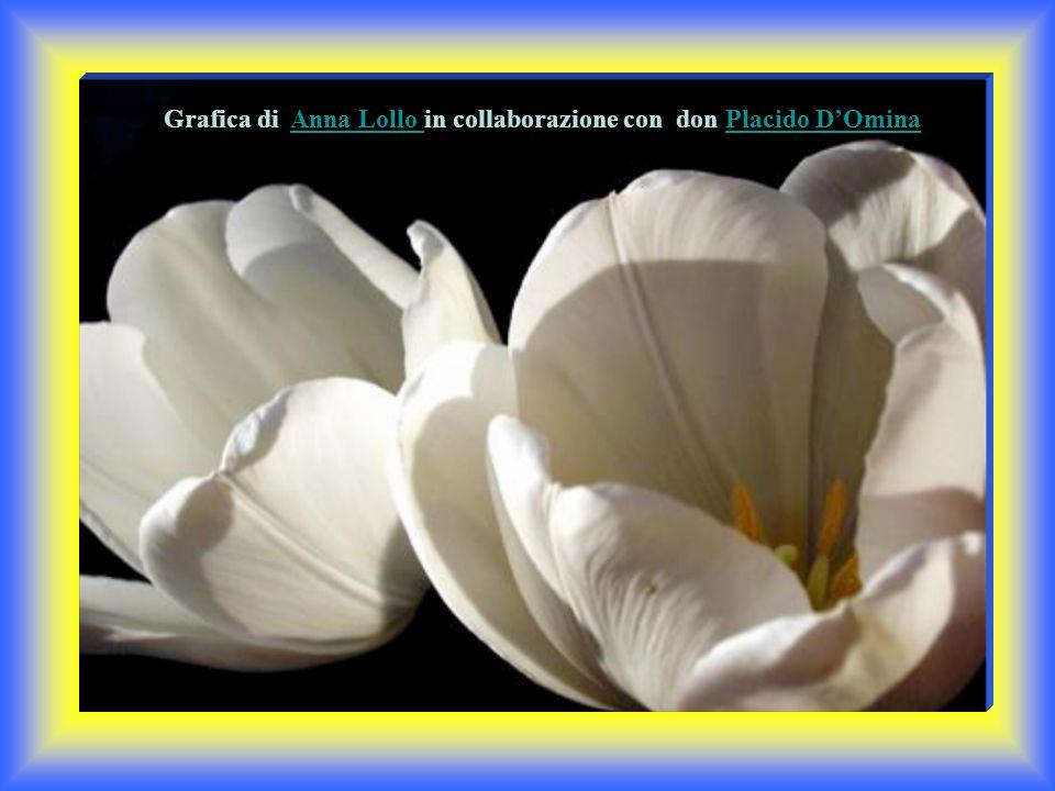 Grafica di Anna Lollo in collaborazione con don Placido D'Omina Anna Lollo Placido D'OminaAnna Lollo Placido D'Omina