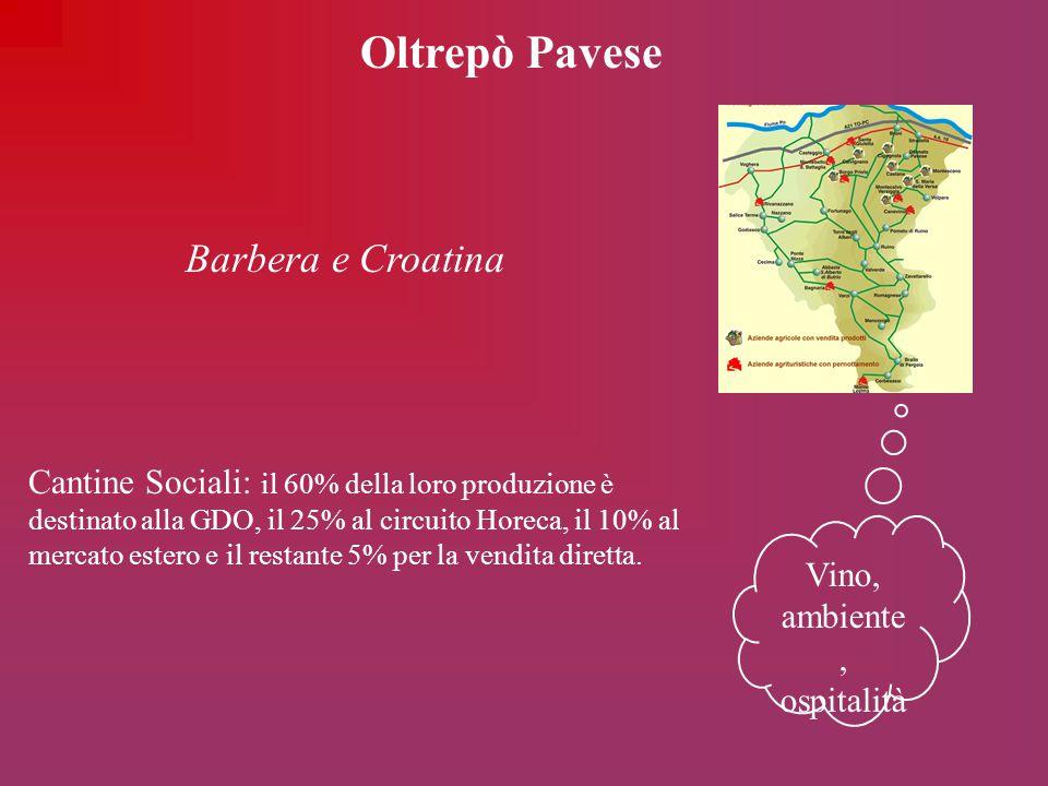 Oltrepò Pavese Vino, ambiente, ospitalità Barbera e Croatina Cantine Sociali: il 60% della loro produzione è destinato alla GDO, il 25% al circuito Ho