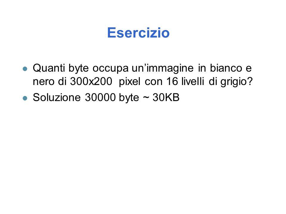 Esercizio l Quanti byte occupa un'immagine in bianco e nero di 300x200 pixel con 16 livelli di grigio? l Soluzione 30000 byte ~ 30KB