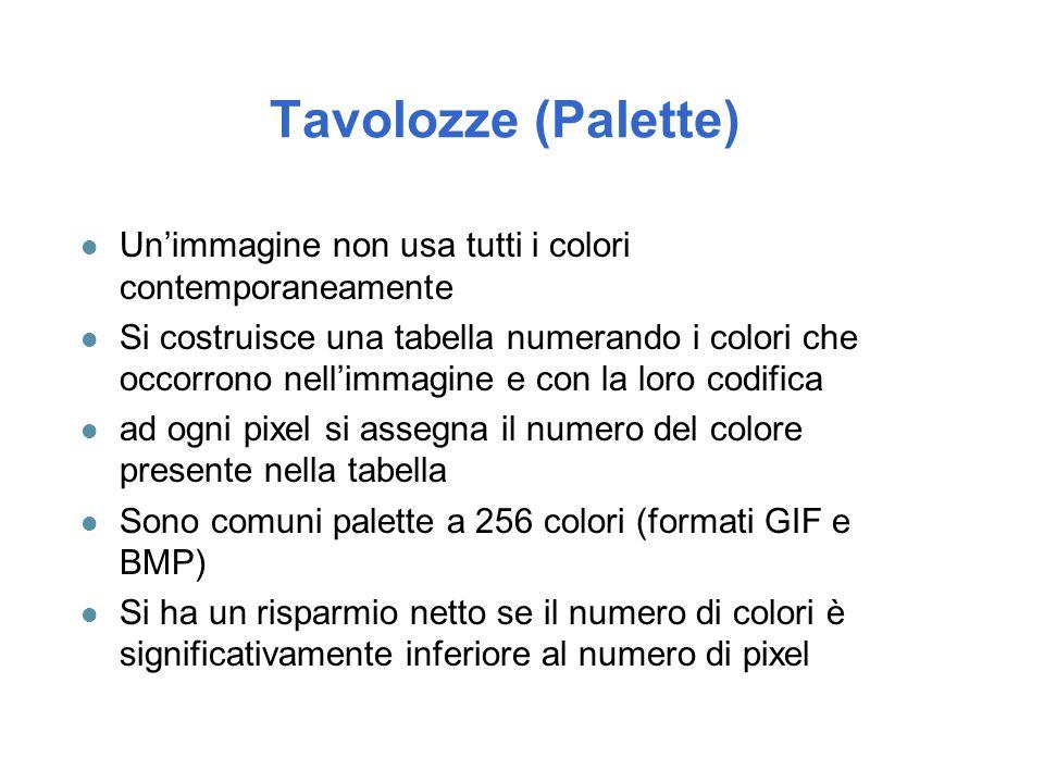 Tavolozze (Palette) l Un'immagine non usa tutti i colori contemporaneamente l Si costruisce una tabella numerando i colori che occorrono nell'immagine