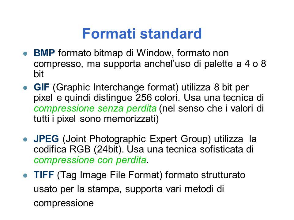 Formati standard l BMP formato bitmap di Window, formato non compresso, ma supporta anchel'uso di palette a 4 o 8 bit l GIF (Graphic Interchange forma