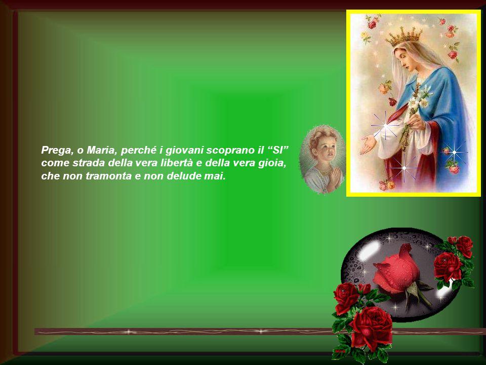"""Ave Maria, nella Santa Casa di Nazareth il tuo """"SI"""" ha reso Dio nostro fratello per sempre."""