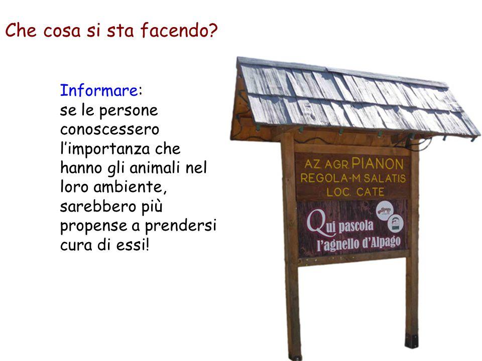 Informare: se le persone conoscessero l'importanza che hanno gli animali nel loro ambiente, sarebbero più propense a prendersi cura di essi! Che cosa