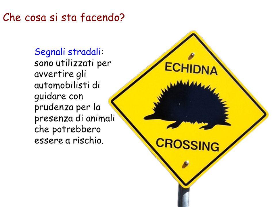 Segnali stradali: sono utilizzati per avvertire gli automobilisti di guidare con prudenza per la presenza di animali che potrebbero essere a rischio.