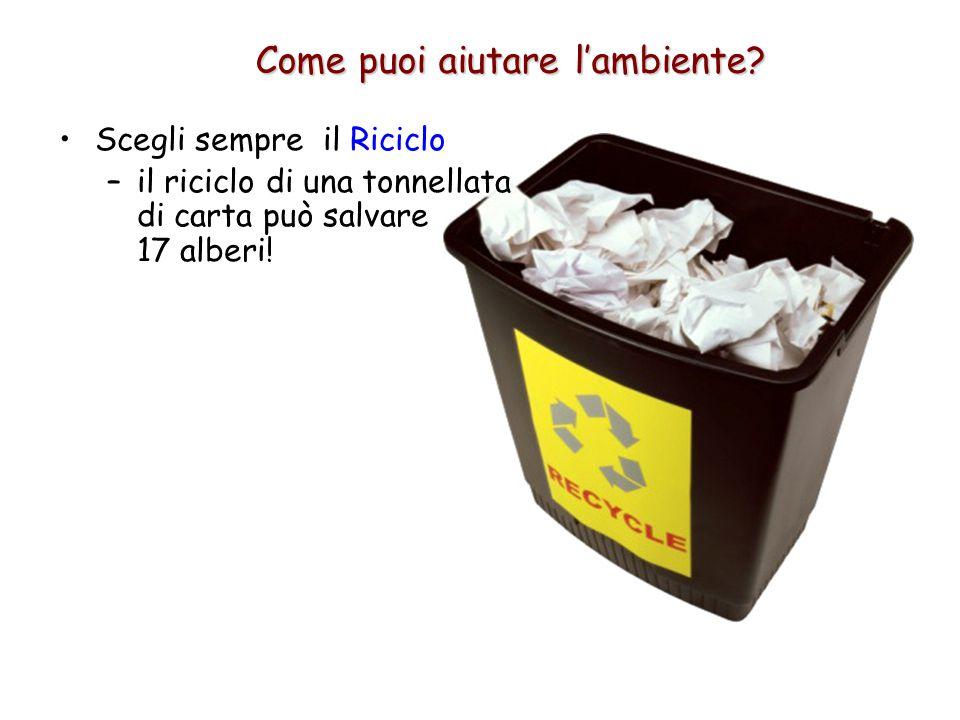 Scegli sempre il Riciclo –il riciclo di una tonnellata di carta può salvare 17 alberi! Come puoi aiutare l'ambiente?