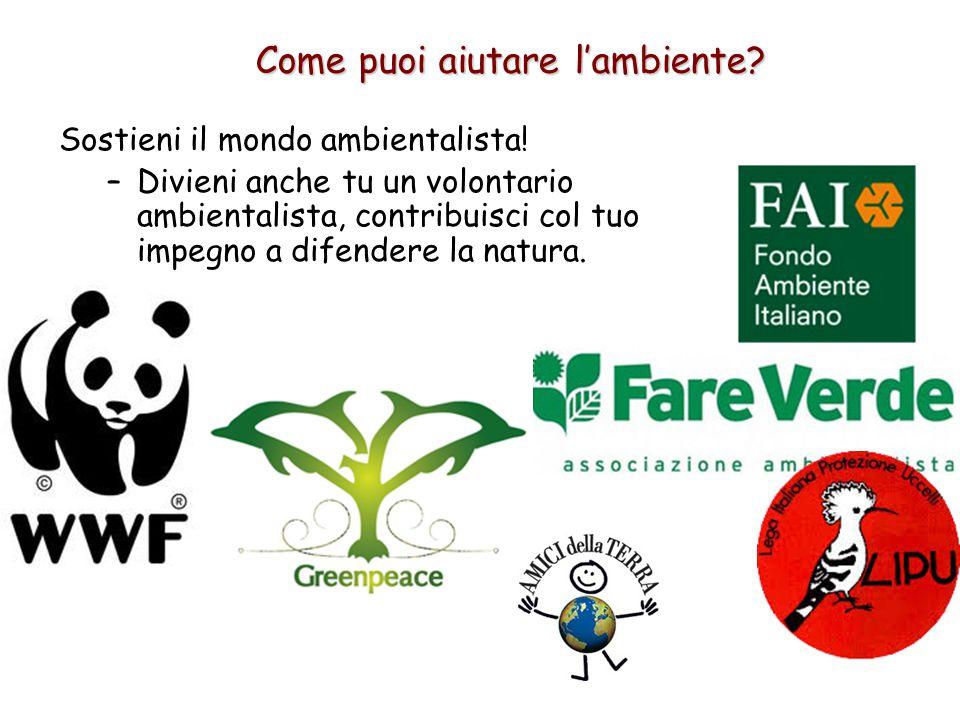Sostieni il mondo ambientalista! –Divieni anche tu un volontario ambientalista, contribuisci col tuo impegno a difendere la natura. Come puoi aiutare