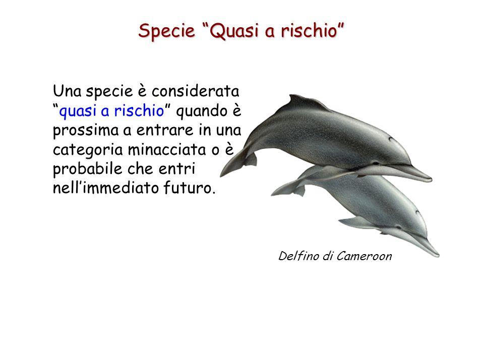 Specie Quasi a rischio Una specie è considerata quasi a rischio quando è prossima a entrare in una categoria minacciata o è probabile che entri nell'immediato futuro.