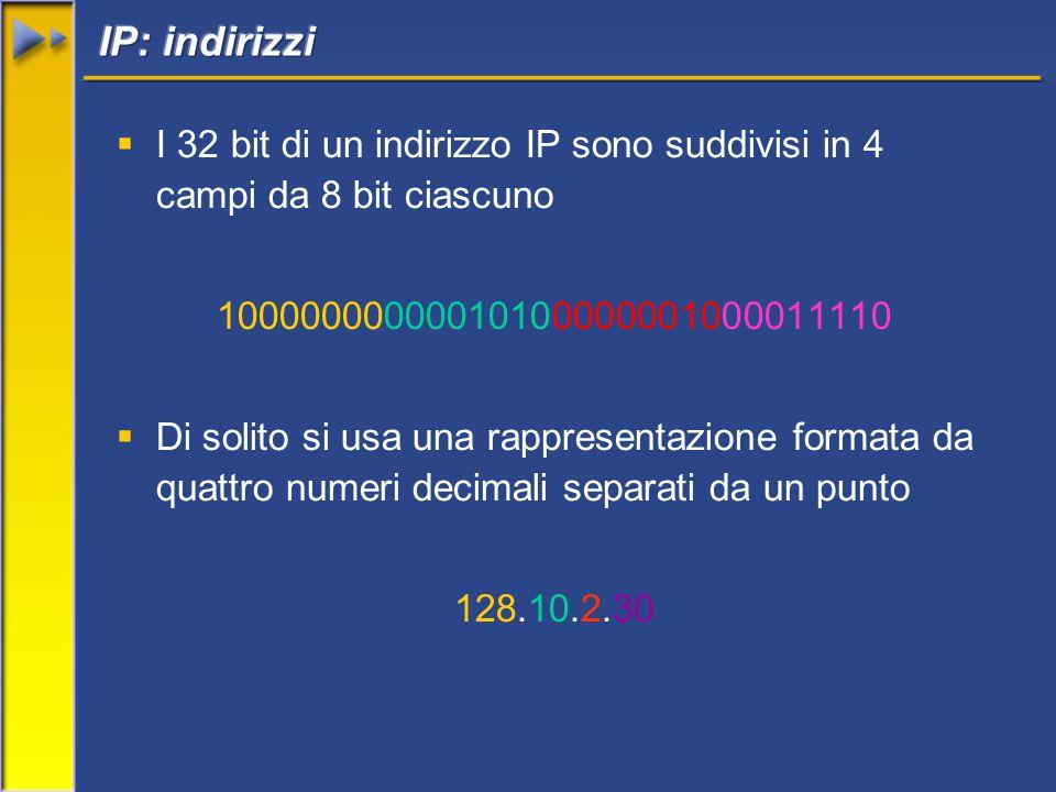  I 32 bit di un indirizzo IP sono suddivisi in 4 campi da 8 bit ciascuno 10000000000010100000001000011110  Di solito si usa una rappresentazione formata da quattro numeri decimali separati da un punto 128.10.2.30