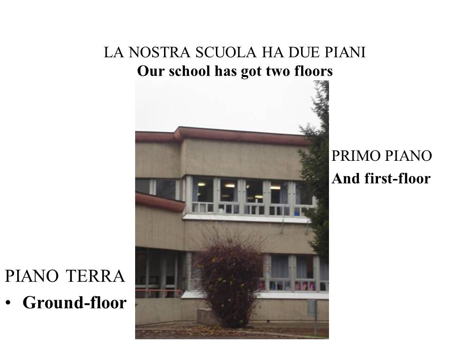 LA NOSTRA SCUOLA HA DUE PIANI Our school has got two floors PIANO TERRA Ground-floor PRIMO PIANO And first-floor
