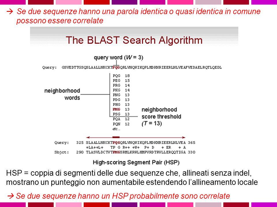  Se due sequenze hanno una parola identica o quasi identica in comune possono essere correlate HSP = coppia di segmenti delle due sequenze che, allin