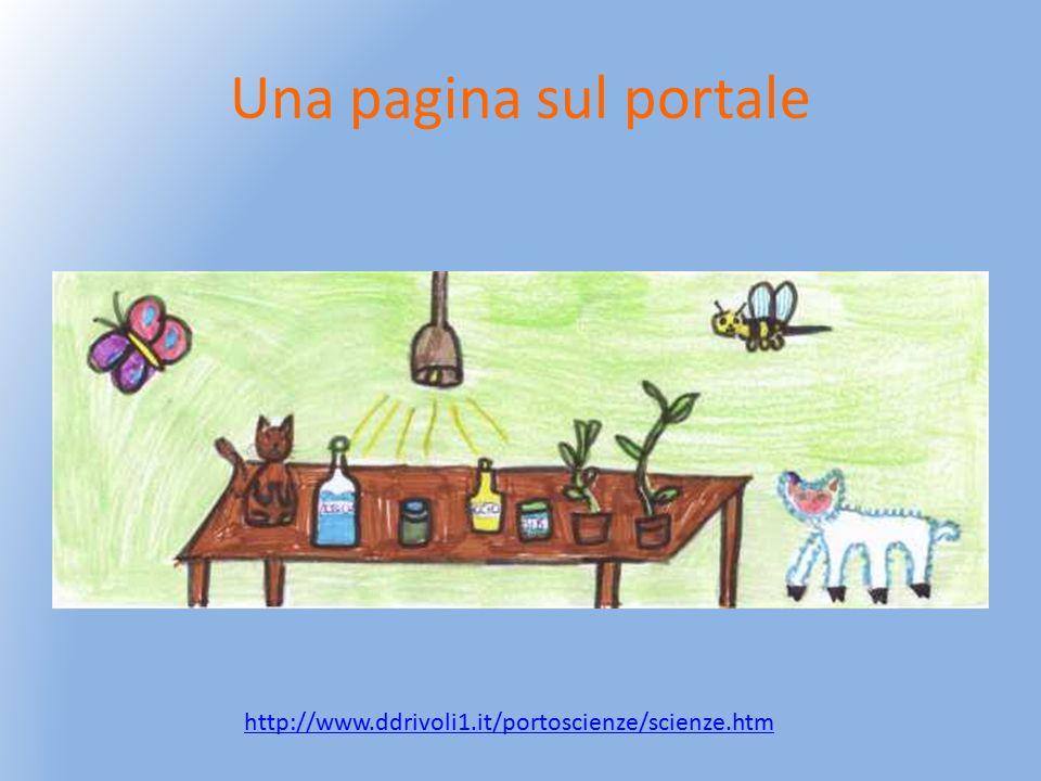 Una pagina sul portale http://www.ddrivoli1.it/portoscienze/scienze.htm