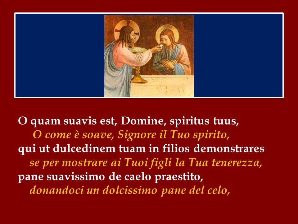Per questo Gesù istituirà nell'ultima Cena il Sacramento dell'Eucaristia: perché i suoi discepoli possano avere in se stessi la sua carità - questo è decisivo – e, come un unico corpo unito a Lui, prolungare nel mondo il suo mistero di salvezza.