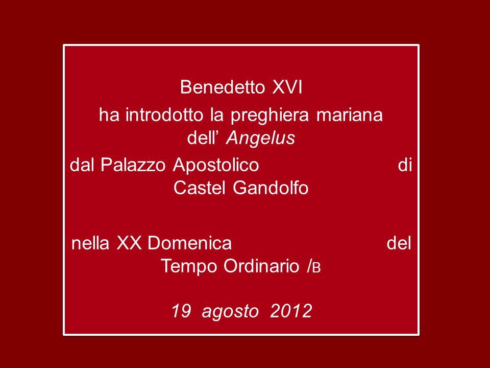 Benedetto XVI ha introdotto la preghiera mariana dell' Angelus dal Palazzo Apostolico di Castel Gandolfo nella XX Domenica del Tempo Ordinario / B 19 agosto 2012 Benedetto XVI ha introdotto la preghiera mariana dell' Angelus dal Palazzo Apostolico di Castel Gandolfo nella XX Domenica del Tempo Ordinario / B 19 agosto 2012