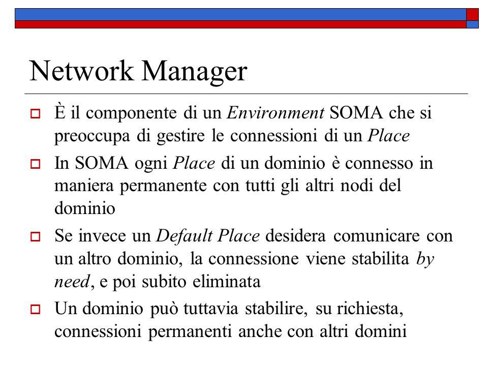 Network Manager  È il componente di un Environment SOMA che si preoccupa di gestire le connessioni di un Place  In SOMA ogni Place di un dominio è c