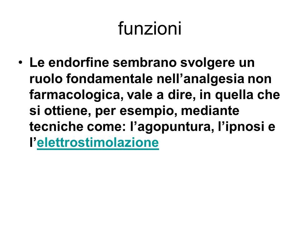 funzioni Le endorfine sembrano svolgere un ruolo fondamentale nell'analgesia non farmacologica, vale a dire, in quella che si ottiene, per esempio, me
