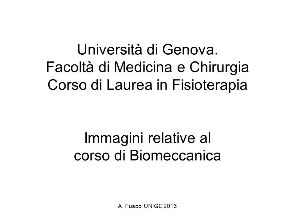 A.Fusco UNIGE 2013 Università di Genova.