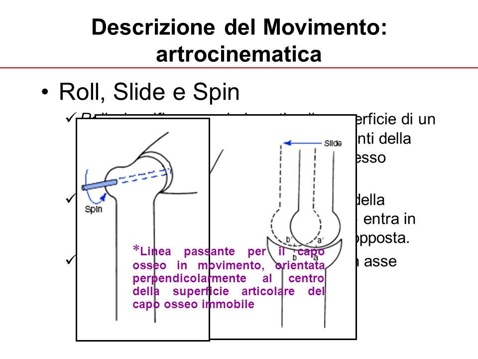 A. Fusco UNIGE 2013 Descrizione del Movimento: artrocinematica Roll, Slide e Spin Roll: si verifica quando i punti sulla superficie di un capo osseo e