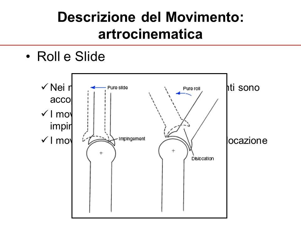 A. Fusco UNIGE 2013 Descrizione del Movimento: artrocinematica Roll e Slide Nei movimenti fisiologici questi movimenti sono accoppiati. I movimenti pu
