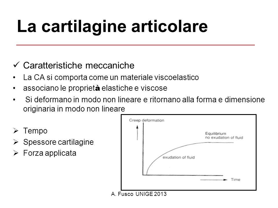 A. Fusco UNIGE 2013 La cartilagine articolare Caratteristiche meccaniche La CA si comporta come un materiale viscoelastico associano le propriet à ela