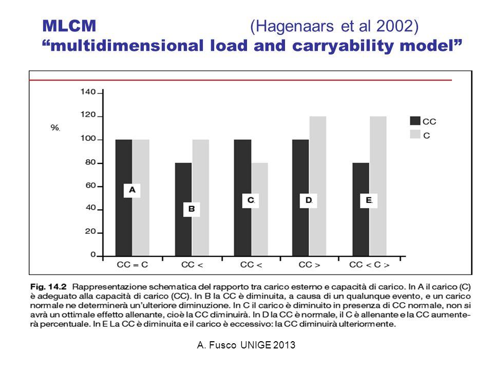 A. Fusco UNIGE 2013 MLCM (Hagenaars et al 2002) multidimensional load and carryability model