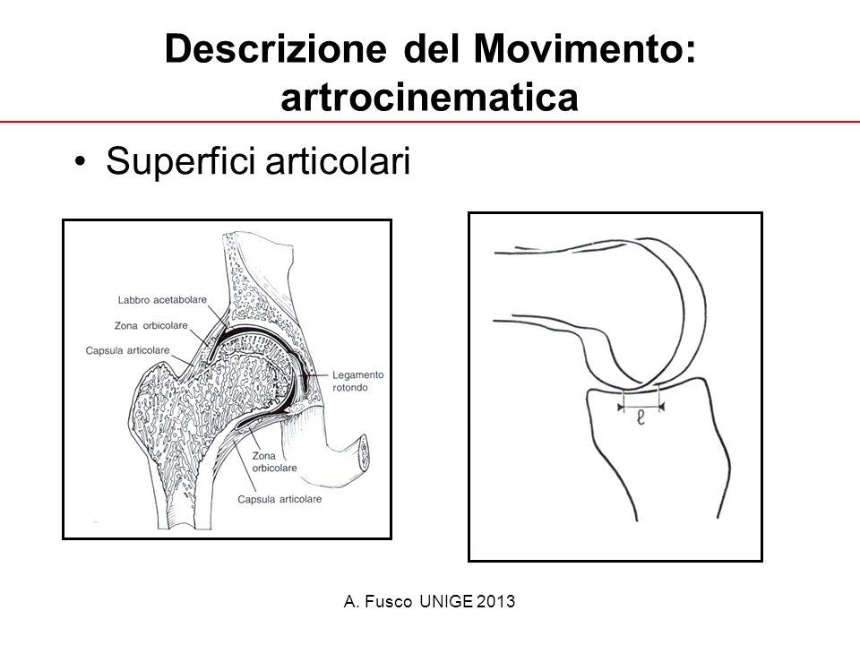 A. Fusco UNIGE 2013 Descrizione del Movimento: artrocinematica Superfici articolari