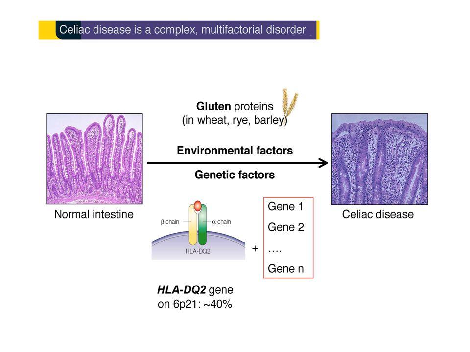 Fattori della dieta che influenzano il rischio di celiachia Eta' di introduzione Quantita' Allattamento al seno