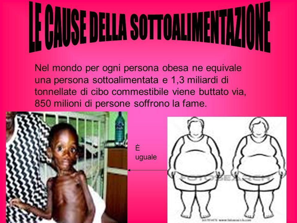 Nel mondo per ogni persona obesa ne equivale una persona sottoalimentata e 1,3 miliardi di tonnellate di cibo commestibile viene buttato via, 850 mili