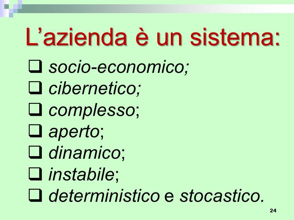 L'azienda è un sistema:  socio-economico;  cibernetico;  complesso;  aperto;  dinamico;  instabile;  deterministico e stocastico.