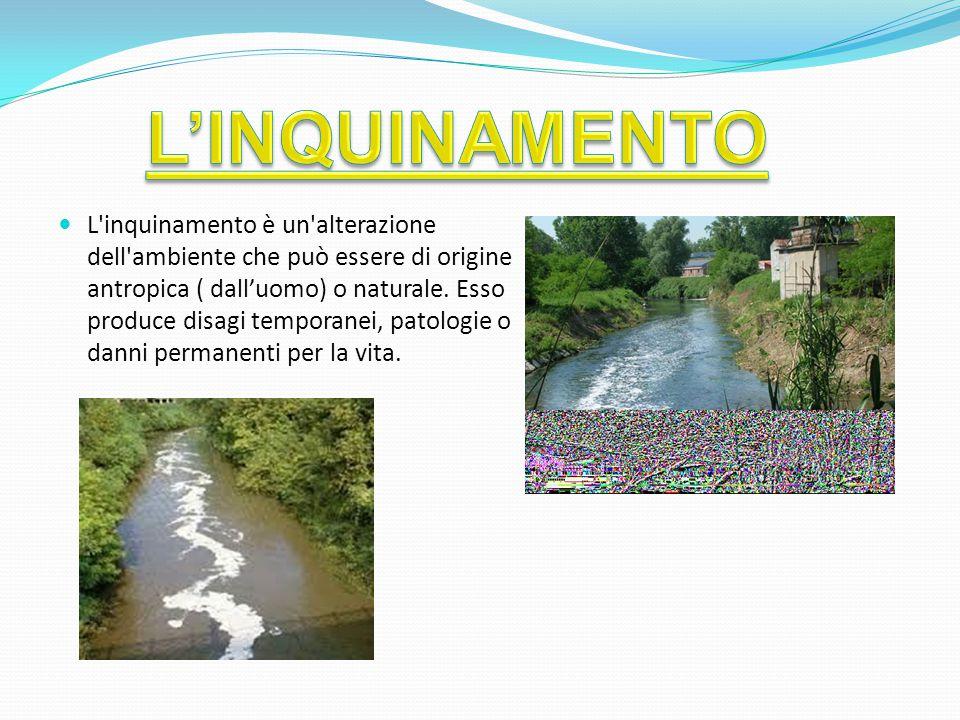 L inquinamento è un alterazione dell ambiente che può essere di origine antropica ( dall'uomo) o naturale.