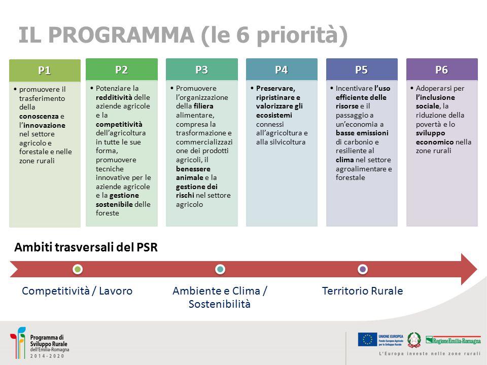 IL PROGRAMMA (le 6 priorità) Ambiti trasversali del PSR