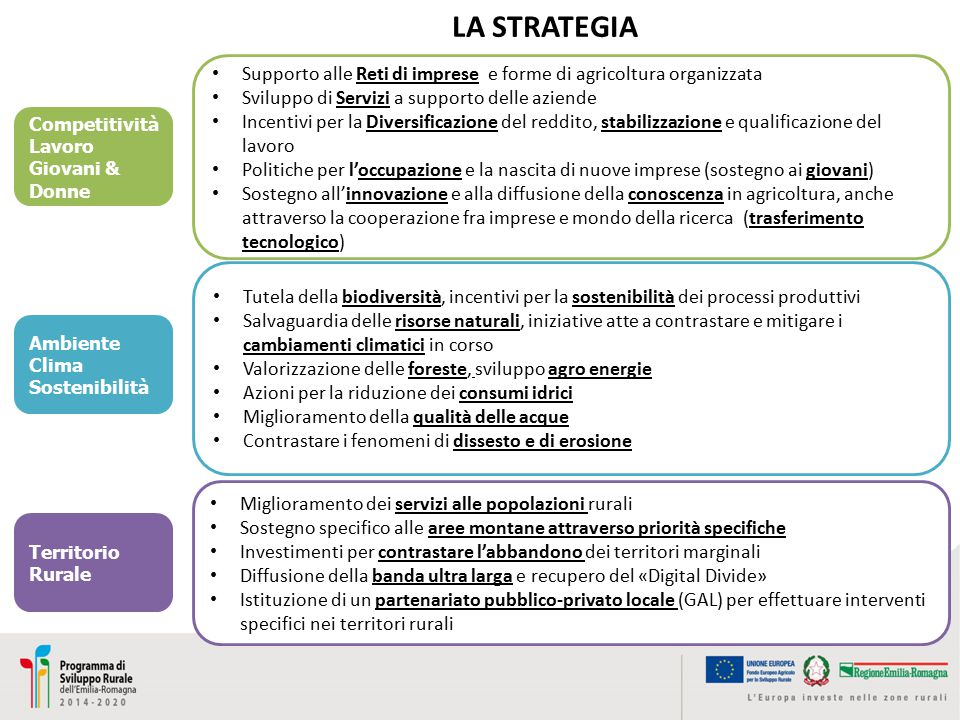 Supporto alle Reti di imprese e forme di agricoltura organizzata Sviluppo di Servizi a supporto delle aziende Incentivi per la Diversificazione del re