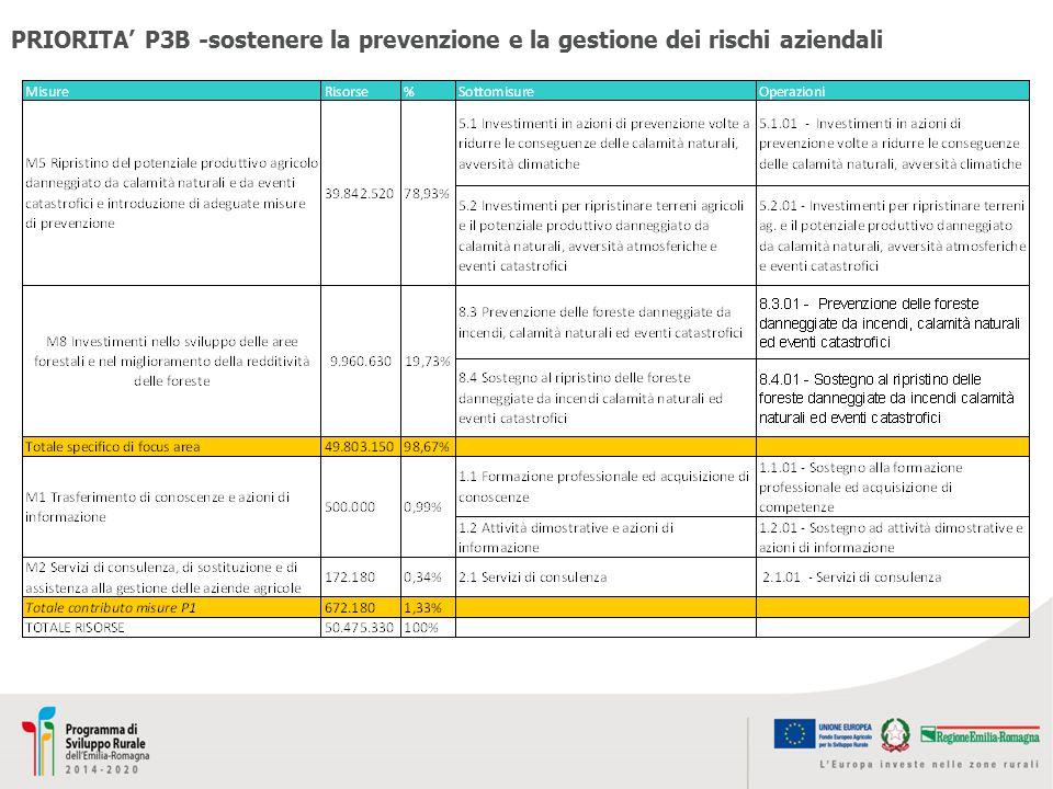 PRIORITA' P3B -sostenere la prevenzione e la gestione dei rischi aziendali