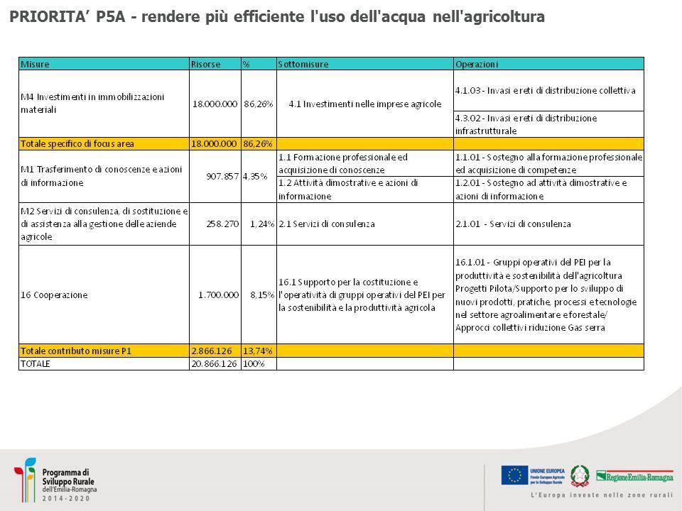 PRIORITA' P5A - rendere più efficiente l'uso dell'acqua nell'agricoltura