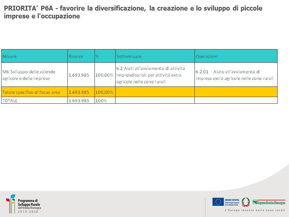 PRIORITA' P6A - favorire la diversificazione, la creazione e lo sviluppo di piccole imprese e l'occupazione