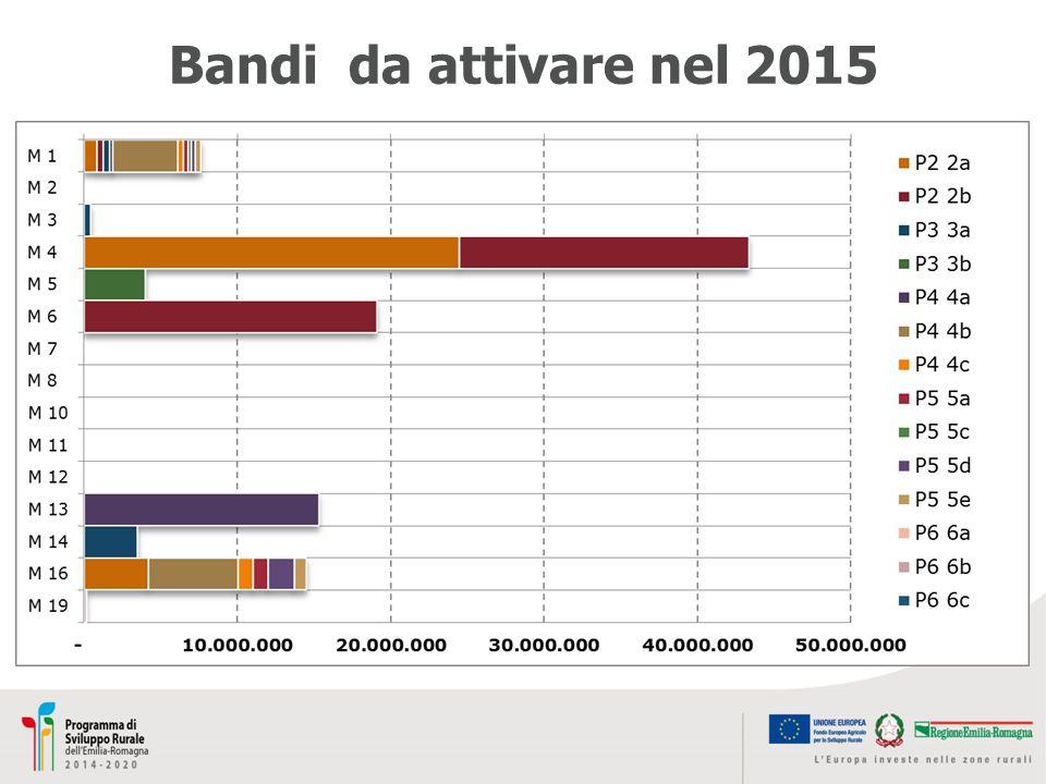 Bandi da attivare nel 2015