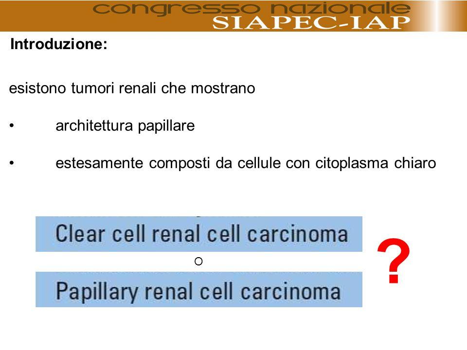 La corretta classificazione delle neoplasie a cellule renali oggi può contare su specifiche indagini immunoistochimiche e citogenetiche in grado di permettere la distinzione di entità neoplastiche con caratteri morfologici talora sovrapponibili.