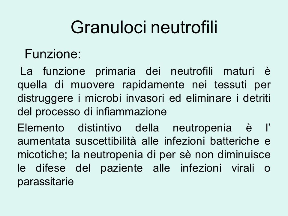 Neutropenia autoimmune dell' infanzia È la causa più freqente di neutropenia cronica dell' infanzia Ricerca anticorpi anti-neutrofili positiva Esame del midollo e esami immunologici normali Colpisce soprattutto i lattanti Risole spontaneamente, in media 20 mesi (6-54) In genere aumentata incidenza di infezioni minori, rare quelle gravi G-CSF va usato solo in caso di infezioni gravi e in previsione di un intervento chirurgico
