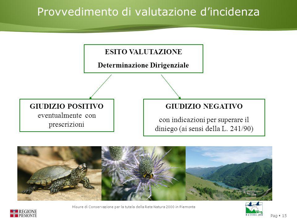 Pag  15 Misure di Conservazione per la tutela della Rete Natura 2000 in Piemonte Provvedimento di valutazione d'incidenza ESITO VALUTAZIONE Determinazione Dirigenziale GIUDIZIO POSITIVO eventualmente con prescrizioni GIUDIZIO NEGATIVO con indicazioni per superare il diniego (ai sensi della L.